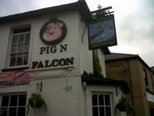 Pig N Falcon