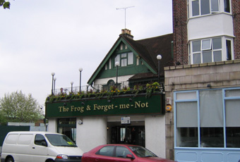 The frog clapham