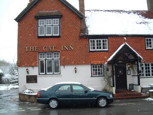 Cat Inn