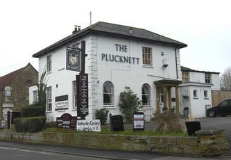 Plucknett