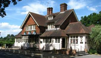 Bird In Hand Woking >> Olive Tree, Jacobs Well, Surrey, GU4 7QD - pub details # beerintheevening.com