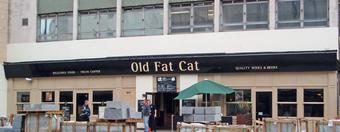 Old Fat Cat