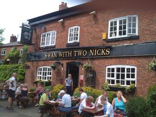 Swan With Two Nicks