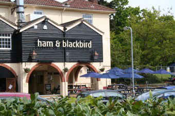 Ham and Blackbird