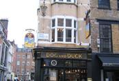 picture of The Dog and Duck, Soho
